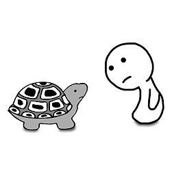 бурхан и черепаха инст.jpg