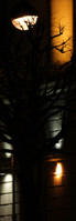 spb_night_bridges 2_7.jpg