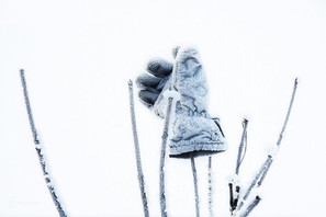 Ледяная перчатка.jpg