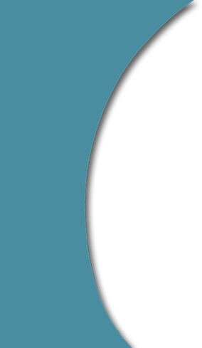 banner-curve.png