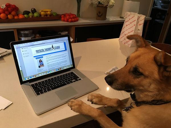 Buddy computer.jpg