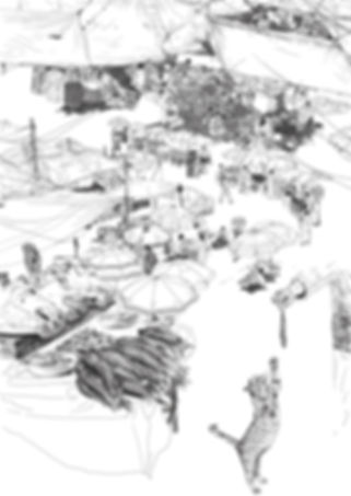 HCP_Illustration.jpg
