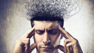 1,5 Kg. : Akıl, Duygu ve Odak