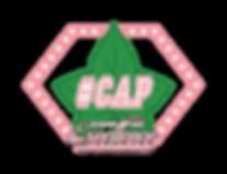 AKA CAP logo .PNG