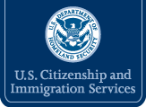What are the U.S. Government requirements for translated immigration documents?