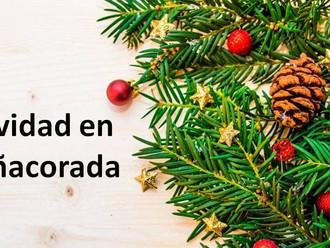 Programa Navidad en Peñacorada