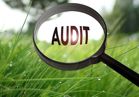 Magnifying glass with the word audit on