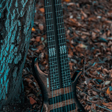 fm guitars felix martin 12 14 16 string guitar-12.jpg