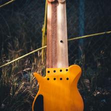 fm guitars-113.jpg