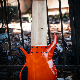 fm guitars-24.jpg
