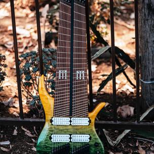 fm guitars.jpg