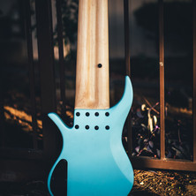 fm guitars-19.jpg