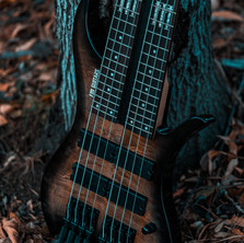 fm guitars felix martin 12 14 16 string guitar-21.jpg