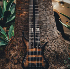 fm guitars felix martin 12 14 16 string guitar-187.jpg