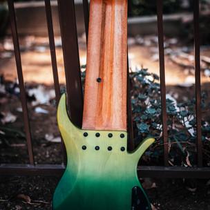 fm guitars-86.jpg