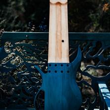 fm guitars-141.jpg