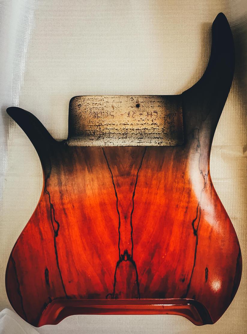 fm guitars-10.jpg