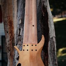 fm guitars felix martin 12 14 16 string guitar-39.jpg