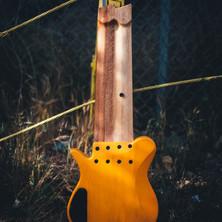 fm guitars-111.jpg