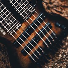 fm guitars felix martin 12 14 16 string guitar-183.jpg
