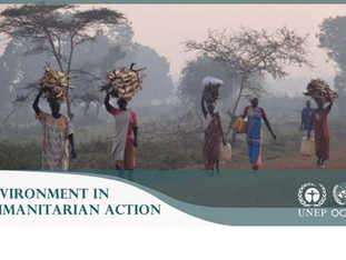Environment in Humanitarian Action