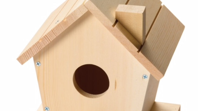 Birdhouse Kit ( Age 8 +)
