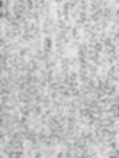 008-dbv-ladron.jpg