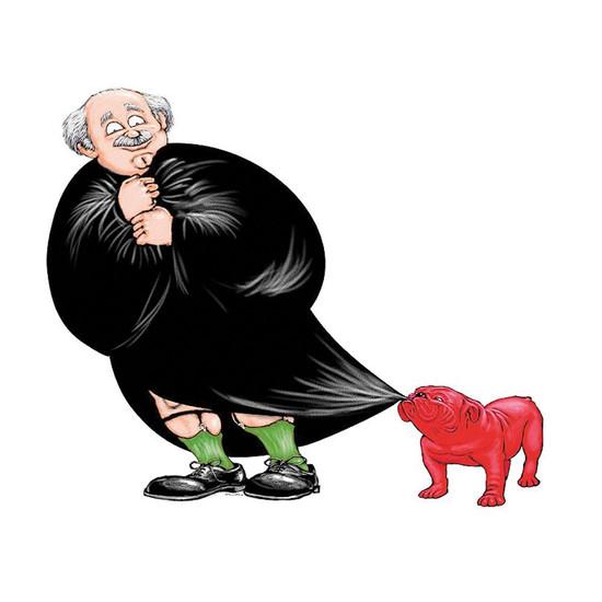 Judge Cartoon, Litigation Graphix
