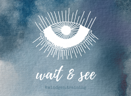 Wait & See Meditation