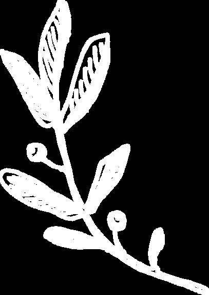 flora-7.png