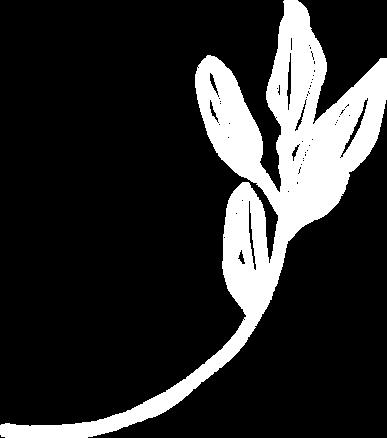 flora-10.png