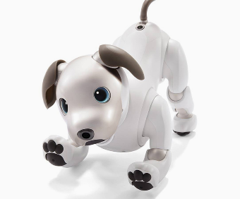 Sony Re-Enters Robot Dog Market With a New Aibo After a Decade Long Hiatus