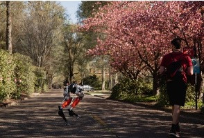 Bipedal Robot Makes Historic 5KM Run by Using Machine Learning