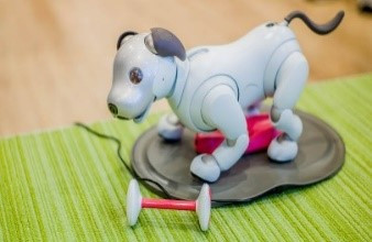 Sony Domestic Aibo Sales Reach 11,111 Units in 3 Months