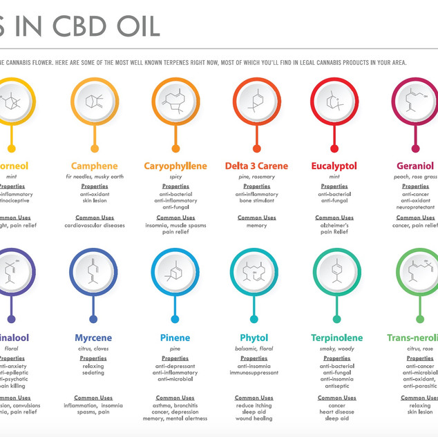 Terpenes are one of the Medicinal Benefits of Cannabis