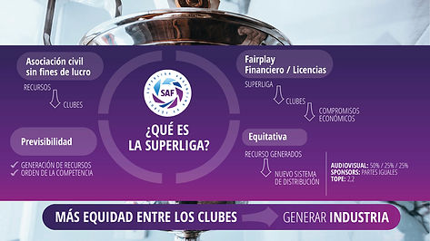 SAF_INFORME_FINAL_ESPAÑOL2.001.jpeg
