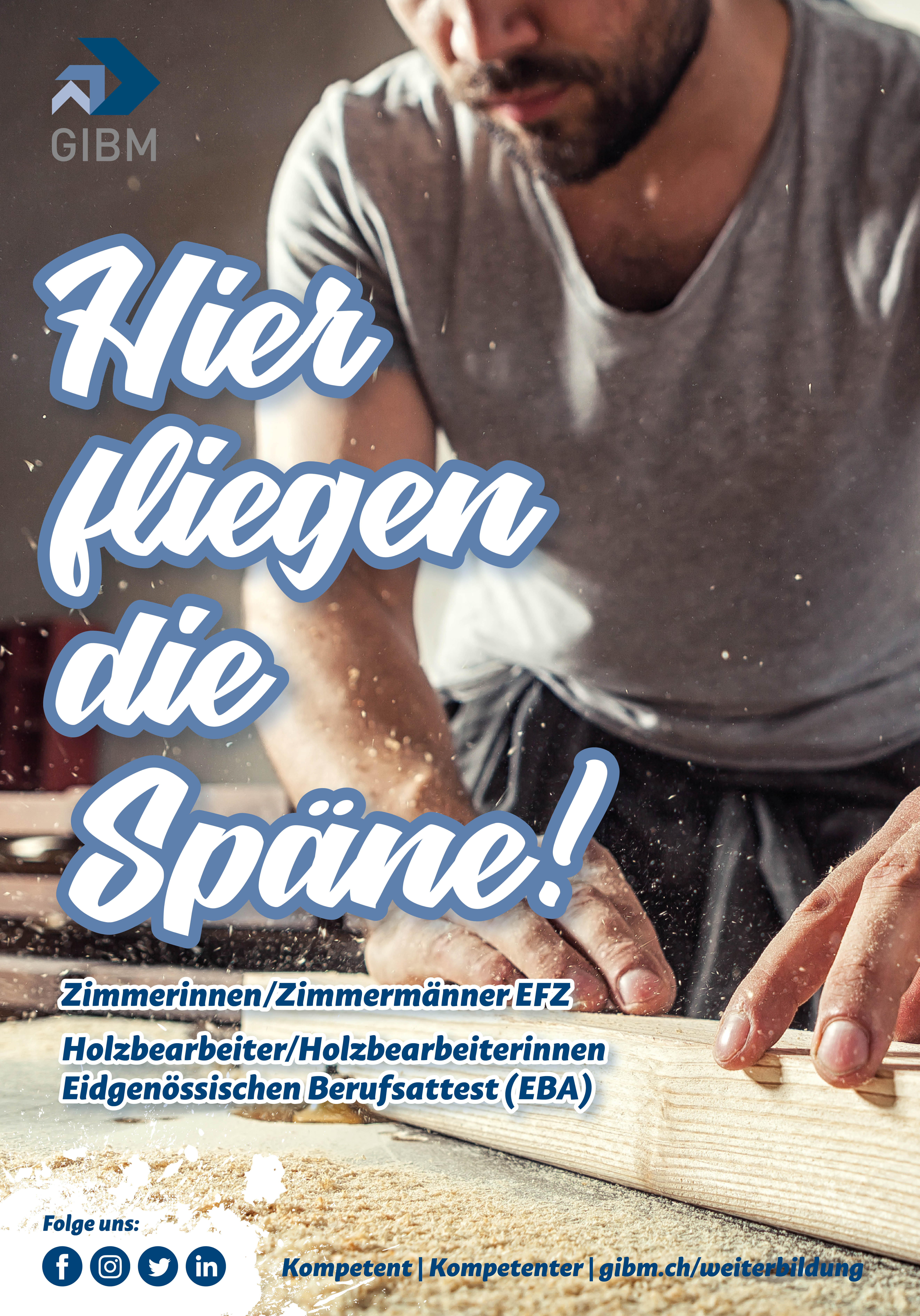 1_GIBM_Plakate_Berufsfelder_F4_1118_1