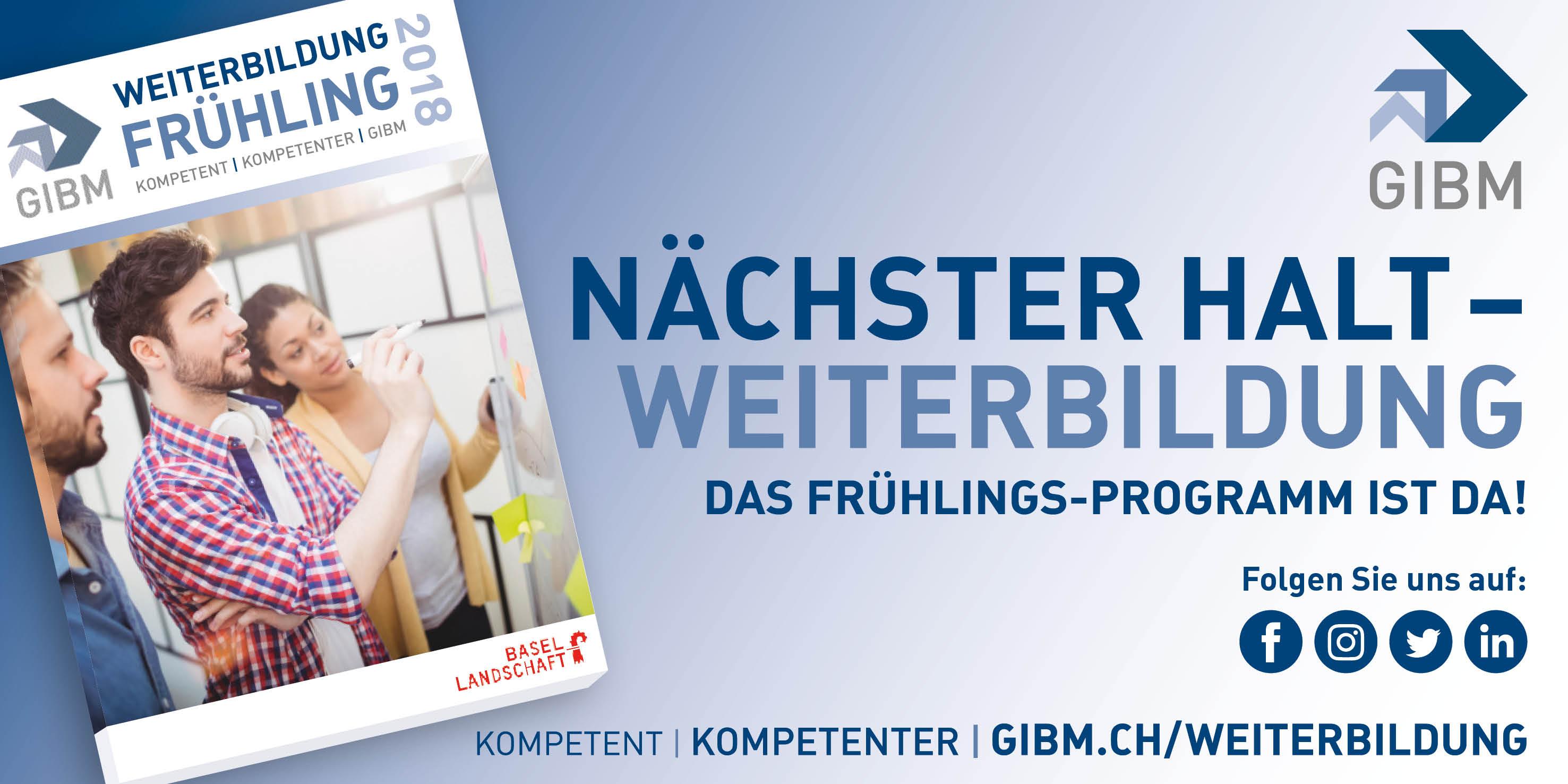 RZ_GIBM_Fenstertransparent_500x250mm_111