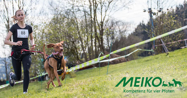 Impression Hundelauf mit Meiko-Logo