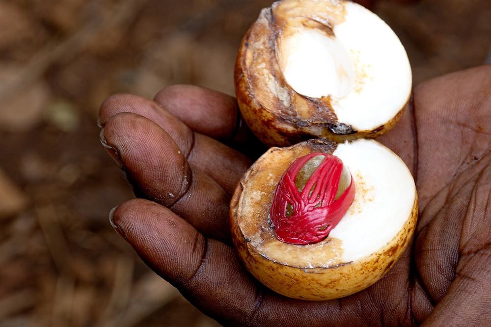 nutmeg benefits for men