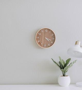 clock with plant.jpg