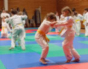 Judo%20Club%20Saint%20Emilion%20-%202019%20(40)_edited.jpg