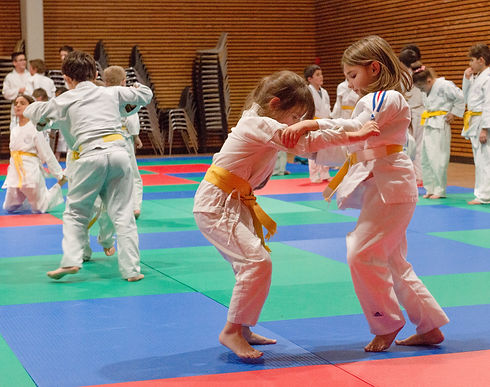 Judo%20Club%20Saint%20Emilion%20-%202019%20(40)_edited.jpg