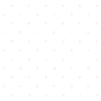 WF_Brand Pattern-01.png