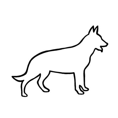 Hund-12