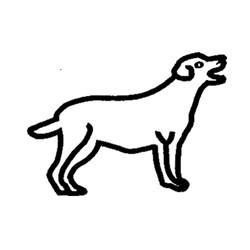 Hund-1