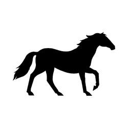 Hest-1