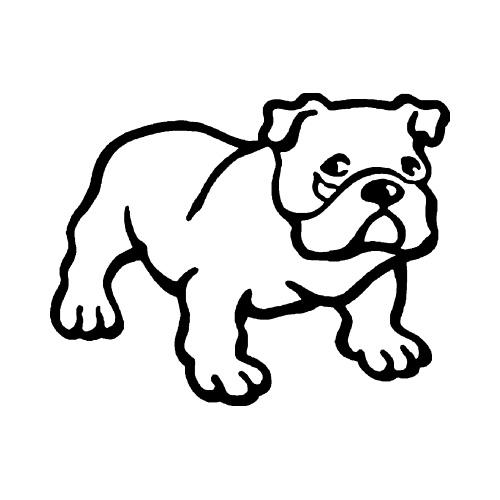 Hund-5