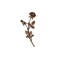 Rose nr. 31960