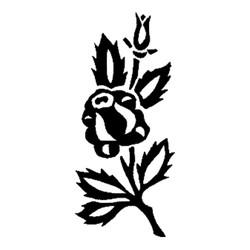 Blomst-11